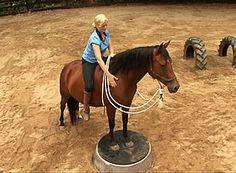 Horse Playground - Horse Pedestal
