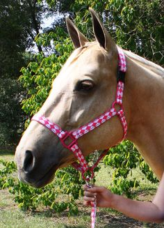 Pink Jester Horse Halter  Pick Your Size by SunHorseTack on Etsy