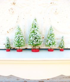 Cute windowsill decoration - five bottle brush trees . on town square . for a vintage-inspired christmas . green and glittered.
