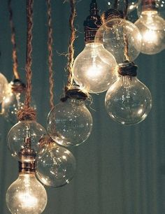 ∷ Variations on a Theme ∷ Collection of light bulbs
