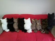 gatos... by Leozinha Docinho, via Flickr