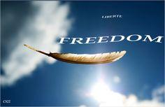Liberté. . . Citations en images