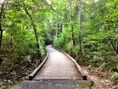 Phinizy swamp nature park augusta ga what 39 s cool in for Landscaping rocks augusta ga
