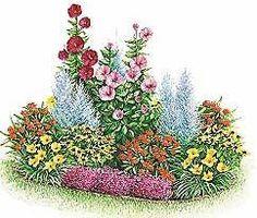 Heat Loving Perrenial Garden Plan