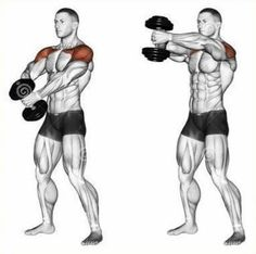 Resultado de imagen de shoulder training - Tap the pin if you love super heroes too! Cause guess what? you will LOVE these super hero fitness shirts! Gym Workout Tips, Dumbbell Workout, Fitness Workouts, At Home Workouts, Deltoid Workout, Workout Plan For Men, Men Exercise, Workout Men, Workout Routines