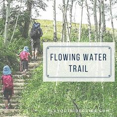 Trip description for Flowing Water Trail, Bow Valley Provincial Park, Alberta
