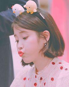 Short Hair Cuts, Short Hair Styles, Iu Gif, Emo Anime Girl, Pretty Korean Girls, Cute Poses, Iu Fashion, Pretty Photos, Korean Actresses