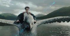Divertissement: Bienvenue dans l'univers magique de Harry Potter, à Orlando + vidéo musical - Frawsy