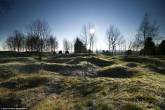 Scars of battle: Haunting picture of a landscape near Verdun, France still shows the pockmarks and craters made in the Great War almost 100 years ago