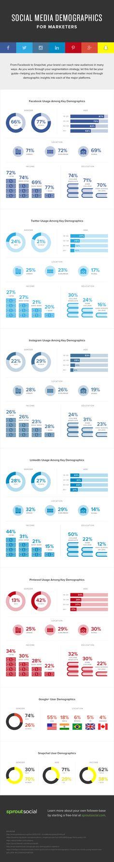Sur le blog, nous publions régulièrement les statistiques d'usage des principaux réseaux sociaux. Nous pensons qu'il s'agit de ressources utiles pour les p