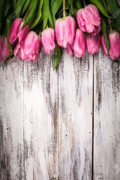 18647127-Pink-tulips-over-shabby-white-wooden-table-Stock-Photo-flowers-spring-background.jpg 866×1.300 pixel