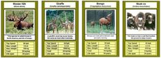 Free Printable Cards, Free Printables, Trump Card, Top Trumps, Forest School, Animal Games, Card Games, Projects To Try, Baseball Cards