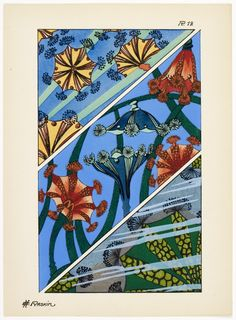 'Fantaisies oceanographiques en 25 planches en couleurs' by E. Published 1924 by F. Wine And Liquor Store, Art Nouveau, Art Deco, Library Posters, Book Illustration, Illustrations, Pattern Drafting, Natural History, Textures Patterns