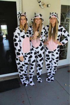next halloween costume right here - Halloween Costume Cow