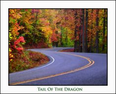 Tail Of The Dragon. Deals Gap - Tn/nc Border. 318 Curves In Just 11 Miles.  A Biker's Dream!