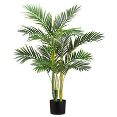 2'6' Areca Silk Palm Tree w/Pot -Green (pack of 2) * To view further for this item, visit the image link.