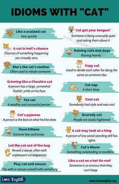 English Grammar Rules, English Grammar Worksheets, English Writing Skills, Grammar And Vocabulary, English Idioms, English Vocabulary Words, Learn English Words, English Study, English Lessons