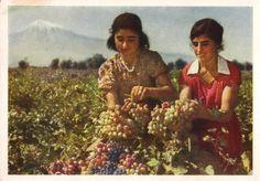 Armenian SSR, Ararat Valley, 1961.