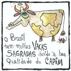 """""""O Brasil tem muitas VACAS SAGRADAS devido à boa qualidade do capim""""."""