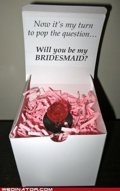 Will you be my bridesmaid? Adorbz!