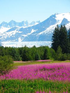Alaska--Mendenhall Glacier. #Relax more with healing sounds: