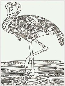 Flamingo color page black and white drawing outline for decorative painting idea: struisvogel Make your world more colorful with free printable coloring pages from italks. Our free coloring pages for adults and kids. Flamingo Coloring Page, Bird Coloring Pages, Printable Adult Coloring Pages, Doodle Coloring, Mandala Coloring Pages, Coloring Sheets, Coloring Books, Art Zen, Anti Stress Coloring Book