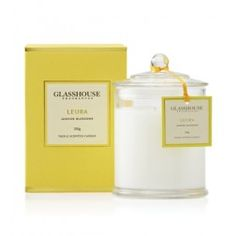 Leura Jasmine Blossoms 350g Triple Scented Candle by Glasshouse Fragrances