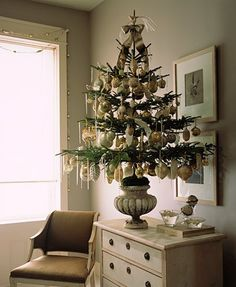 Love the shape of the urn and drape of the tree.