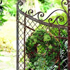 Plant this low-care, living wreath to hang on your doorway, fence, or deck for beauty through the season.