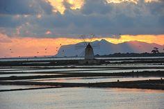 Mothia (Sicily)...............d