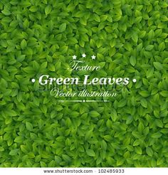 stock vector : Green leaves texture. Vector illustration.