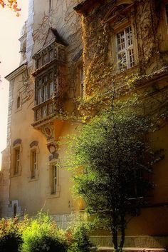 Life is too short, don't be .... • gyclli: old building *** By EdiB.    Great palace