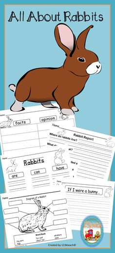 Have your students show off their knowledge about what they have learned about rabbits after they have done some research and read some books. These creatures are fascinating to learn about.
