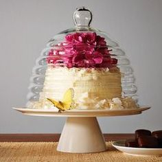 Cake Stand With Dome Bee Hive