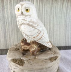 Hey, I found this really awesome Etsy listing at https://www.etsy.com/listing/453562990/vintage-napco-napcoware-white-owl-hand