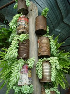 Cheap Planters From Recycled Tin Cans Recycling Metal Cheap Planters, Recycled Planters, Recycled Tin Cans, Recycled Garden, Rustic Planters, Succulent Planters, Recycling Containers, Container Gardening, Flower Gardening