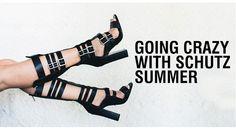 Going Crazy With Schutz Summer