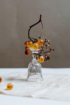 Stephanie Somebody (Stephanie Stamatis) — Firenze Artist Residency Object Photography, Fruit Photography, Still Life Photography, Still Frame, Color Studies, Fruit Art, Food Design, Food Art, Inspiration