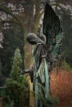 coisasdetere:Anjos ♥