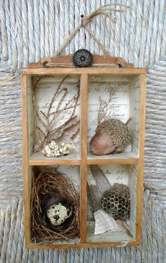 ~ The Feathered Nest ~ cute display box to easily showcase small seasonal items