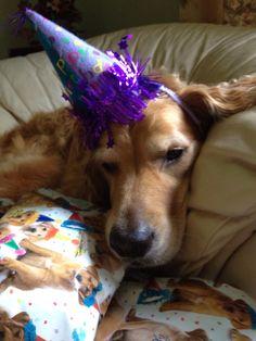 Ho hum...it's my birthday.
