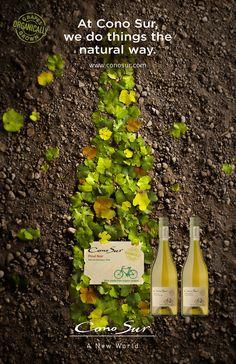 #ConoSur Organic #wine