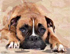 Lazy Boxer Irish Wolfhound, Big Dogs, Funny Things, Lazy, Boxer, Artwork, Animals, Irish Wolfhound Dogs, Funny Stuff