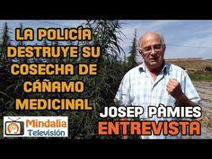 La policía destruye su cosecha de cáñamo medicinal de Josep Pàmies - YouTube