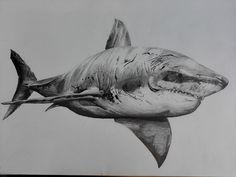 Shark, Nicolas Jaroussie on ArtStation at https://www.artstation.com/artwork/B68om