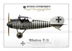 Albatros D.V. Ltn. Kempf 1917 BH-18