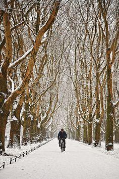 *Winter  - Szczecin (by Marcin Kuras)