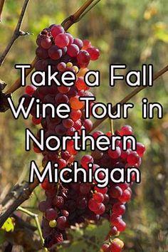 Take a Fall Wine Tour in Northern Michigan Traverse City Michigan, Traverse City Wine Tour, Lake Michigan, Fall In Michigan, Northern Michigan, Michigan Vacations, Michigan Travel, Filter, City Winery