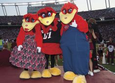 South Carolina Gamecocks mascot Cocky poses with his parents as they join him for a USC homecoming game.