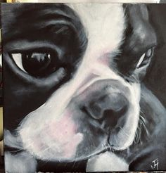 Boston Terrier Kunst - My Love - Boston Terrier Kunst, Boston Terrier Love, Boston Terriers, Boston Art, Dog Paintings, Fauna, Dog Art, Pet Portraits, Dog Pictures